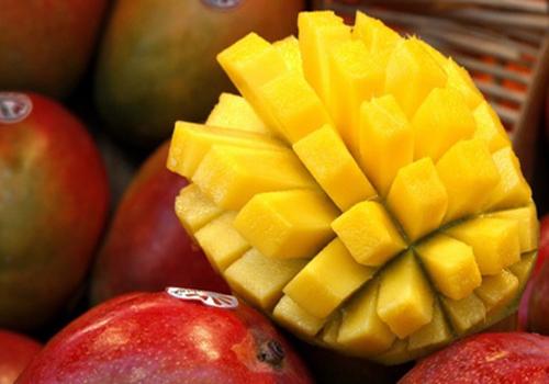 cours-mangue-herisson