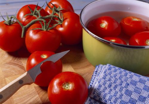 cours-monder-les-tomates